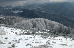 Paisaje prístino del invierno Fotografía de archivo libre de regalías