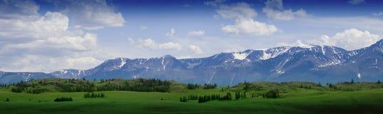 Paisaje, prado y montaña de la naturaleza de Altay Foto de archivo
