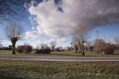 Paisaje primaveral, en Segovia, España del carretera y Bosque del en del vehÃculo Foto de archivo libre de regalías