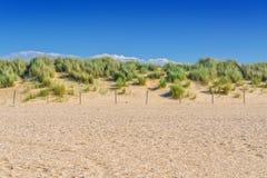 Paisaje protegido, duna en la playa de Holanda foto de archivo