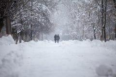 Paisaje que nieva en el parque con la gente que pasa cerca fotografía de archivo libre de regalías