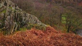 Paisaje que sorprende en las montañas del parque nacional Inglaterra del distrito del lago almacen de video