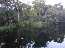paisaje fotos de archivo