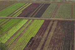 Paisaje rústico Campos de los granjeros Fotografía de archivo libre de regalías