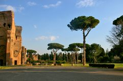 Paisaje romano de los baños con los pinos imagen de archivo libre de regalías