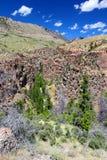 Paisaje rugoso de la montaña de Wyoming Imágenes de archivo libres de regalías