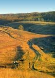 Paisaje rural foto de archivo libre de regalías