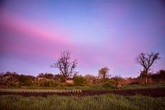 Paisaje rural - amanecer rosado Fotos de archivo libres de regalías
