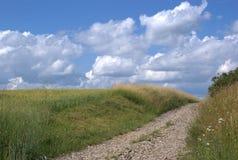 Paisaje rural con el camino Imagenes de archivo