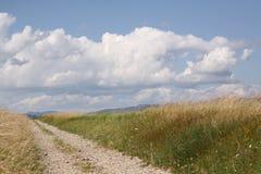 Paisaje rural con el camino Fotos de archivo libres de regalías