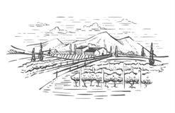 Paisaje rural con el chalet, la plantación de la vid y las colinas Ejemplo del diseño del drenaje de la mano para la etiqueta o e stock de ilustración