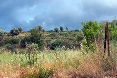 Paisaje rural con el cielo tempestuoso Imagen de archivo libre de regalías