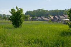 Paisaje rural con la hierba grande Fotos de archivo