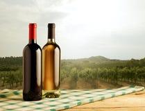 Paisaje rural con las botellas de vino en primero plano Imagen de archivo libre de regalías