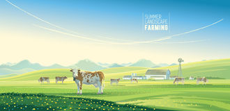 Paisaje rural con las vacas stock de ilustración