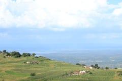 Paisaje rural con los campos de maíz, África meridional, naturaleza africana de Swazilandia Foto de archivo libre de regalías