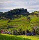 Paisaje rural con los campos y la casa verdes enormes de la granja Foto de archivo libre de regalías