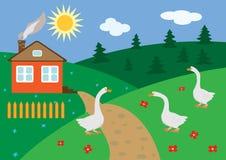 Paisaje rural con los gansos Imagen de archivo libre de regalías