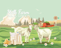 Paisaje rural de la granja con las cabras Ejemplo del vector de la agricultura Campo colorido Cartel con la granja del vintage stock de ilustración