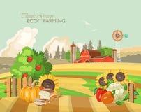 Paisaje rural de la granja con las verduras Ejemplo del vector de la agricultura Campo colorido Cartel con el pueblo y la granja  libre illustration