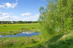 Paisaje rural de la primavera con los árboles del río y de abedul en la orilla Imagen de archivo libre de regalías