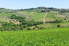 Paisaje rural de los viñedos de Chianti en Toscana fotos de archivo libres de regalías