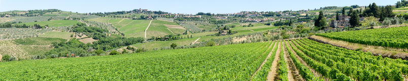 Paisaje rural de los viñedos de Chianti en Toscana imagenes de archivo