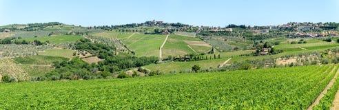 Paisaje rural de los viñedos de Chianti en Toscana fotografía de archivo