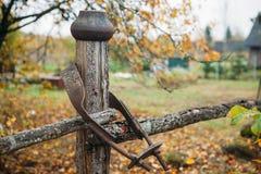 Paisaje rural del arte campo, tablones e hierba Imagen de archivo