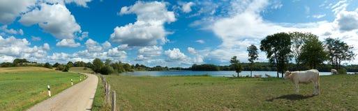 Paisaje rural del campo con el lago, la carretera nacional y las vacas Imagenes de archivo