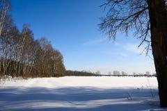 Paisaje rural del invierno. imagen de archivo libre de regalías