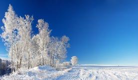 Paisaje rural a del invierno del panorama con el cielo azul, un campo y para Fotos de archivo libres de regalías