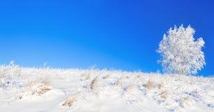 Paisaje rural del invierno un panorama con el cielo azul, un campo y Fotografía de archivo
