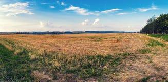 Paisaje rural del otoño imagen de archivo