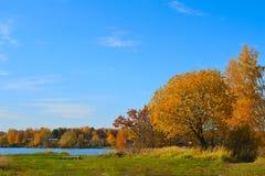 Paisaje rural del otoño Foto de archivo libre de regalías