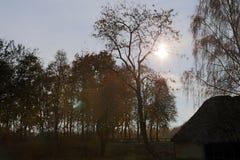 Paisaje rural del otoño del jardín, cercado con los haces de madera Imagen de archivo