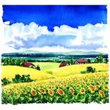 Paisaje rural del pueblo hermoso, campo del girasol, prados, casas de campo, cielo azul, nubes, ejemplo de la acuarela Imagen de archivo