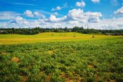Paisaje rural del verano imagen de archivo libre de regalías