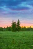 Paisaje rural del verano con el bosque, un prado y niebla en la salida del sol Foto de archivo libre de regalías
