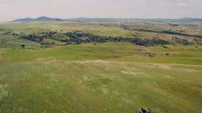 Paisaje rural del verde de la visión aérea almacen de metraje de vídeo