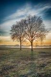 Paisaje rural dramáticamente coloreado con el sil deshojado de dos árboles Foto de archivo