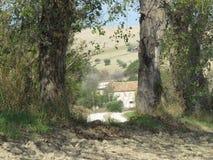 Paisaje rural foto de archivo
