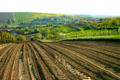 Paisaje rural en campo en Moravia del sur Fotos de archivo