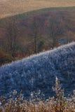 Paisaje rural en último otoño Foto de archivo libre de regalías