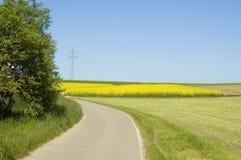 Paisaje rural en primavera Imagenes de archivo