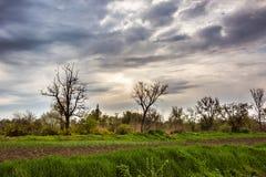 Paisaje rural en primavera Fotos de archivo libres de regalías
