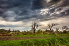 Paisaje rural en primavera Imagen de archivo