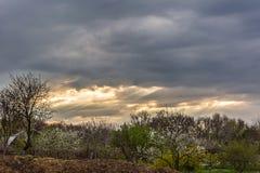 Paisaje rural en primavera Foto de archivo libre de regalías