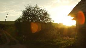 Paisaje rural escénico en puesta del sol en Altai, Rusia metrajes