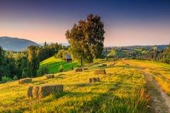 Paisaje rural hermoso con las balas de heno, Transilvania, Rumania, Europa Foto de archivo